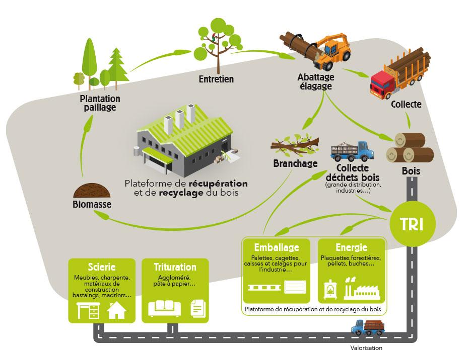 plateforme recyclage