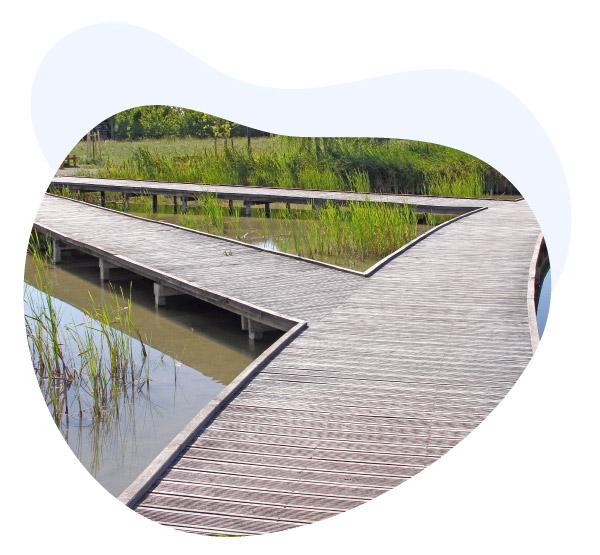 Bois Environnement Services zone écologique