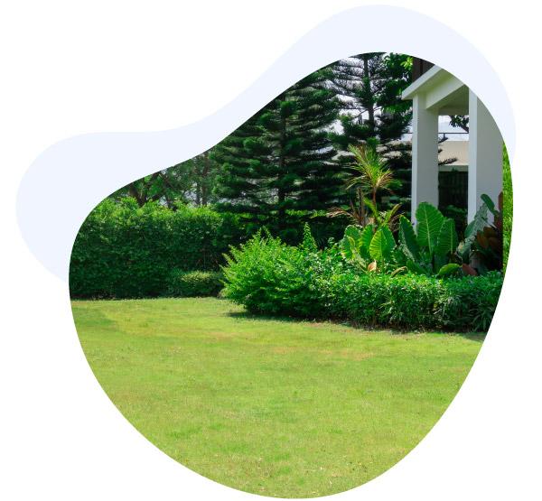 BES Entretien jardin et espace vert