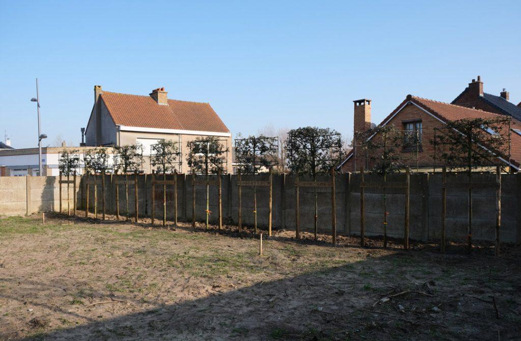 Espace Vert Jardin   Zuydcoote