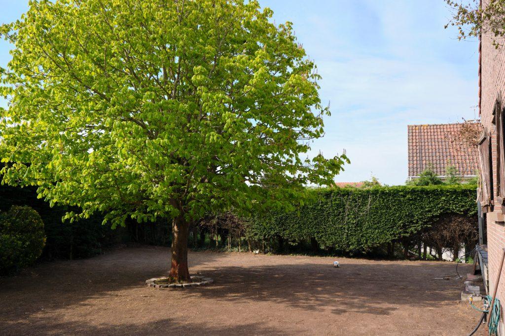 Espace Vert Jardin   Préparation rouleau gazon – Bray Dunes / Dunkerque